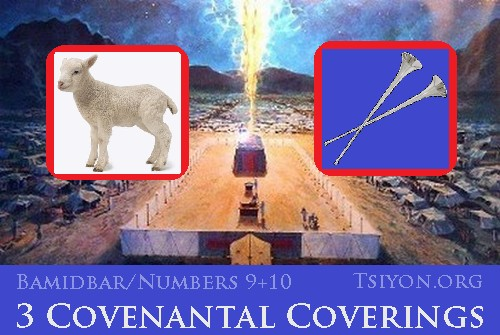 3 Covenantal Coverings