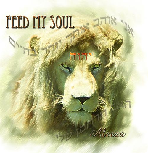 Feed My Soul - Aleeza Evans