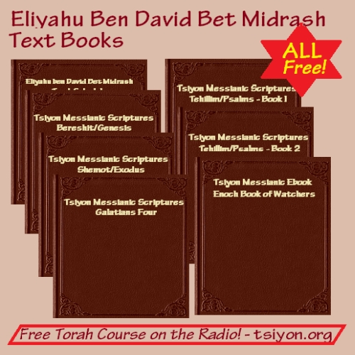 Torah Course - All Free