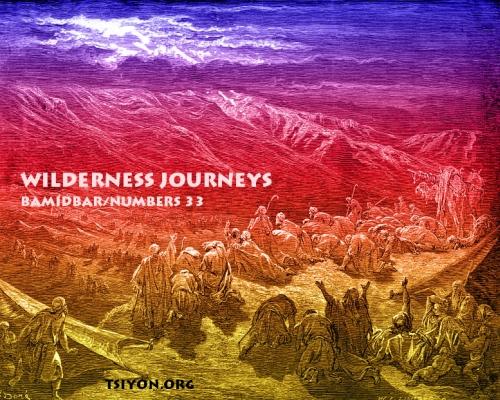 Wilderness Journeys