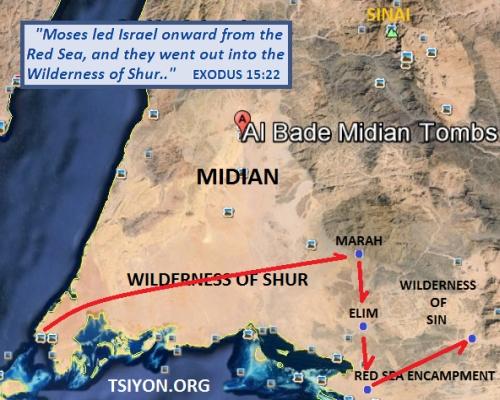 Wilderness in Arabia