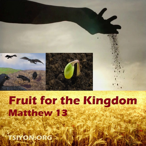 Fruit for the Kingdom