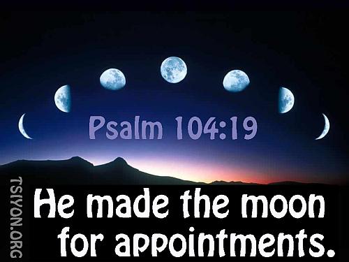 Lunar Calendar Appoinments