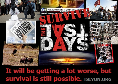 Survive the Last Days