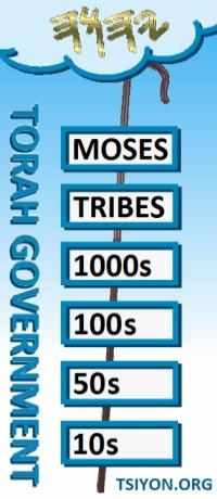Torah Government Chart