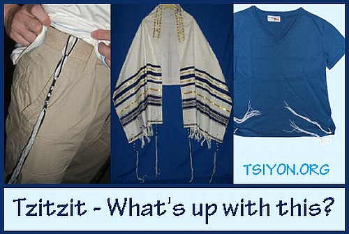 Tzitzit- What's up with this?